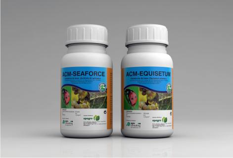 Equisetum&Seaforce